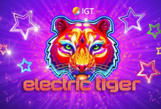 Electric Tiger IGT Slot