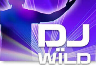 DJ Wild Poker Slot